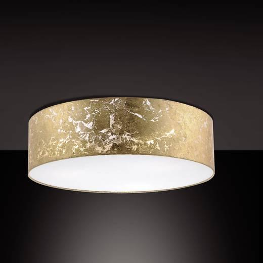 Pendelleuchte LED E14 84 W Paul Neuhaus Shade 8427-12 Gold