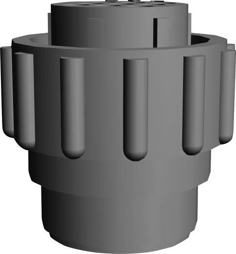 TE Connectivity 206708-1 Rundstecker Stecker, Einbau Serie (Rundsteckverbinder): CPC Gesamtpolzahl: 9 1 St.