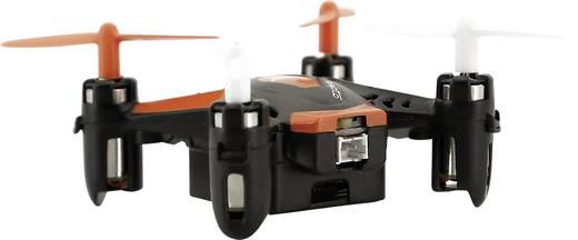 ACME zoopa Q zepto 55 Quadrocopter RtF Einsteiger