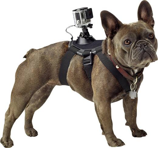 Hundegeschirr GoPro Fetch ADOGM-001 Passend für=GoPro