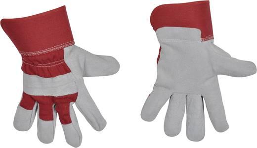 Rindspaltleder Arbeitshandschuh Größe (Handschuhe): 9, L EN 388 , EN 420 AVIT AV13070 1 Paar