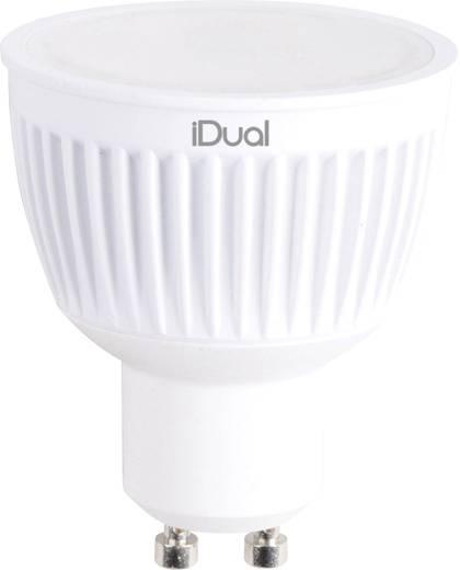 JEDI Lighting LED GU10 Reflektor 7 W = 35 W RGBW (Ø x L) 50 mm x 59 mm EEK: A dimmbar, colorchanging 2 St.