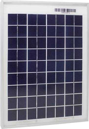 Phaesun Sun Plus 10 Polykristallines Solarmodul 10 Wp 12 V