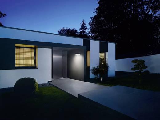 LED-Außenwandleuchte mit Bewegungsmelder 12 W Warm-Weiß Steinel L825 007171 Silber