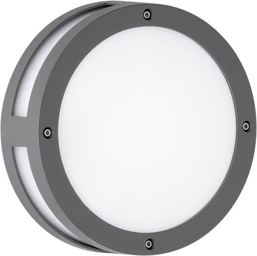 LED-Außenwandleuchte 9 W Warm-Weiß WOFI ASTORIA 4703.01.88.1200 Anthrazit