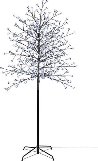 LED-Baum Kirschblüten 180 cm Kalt-Weiß Polarlite PCA-03-003 PCA-03-003 Braun