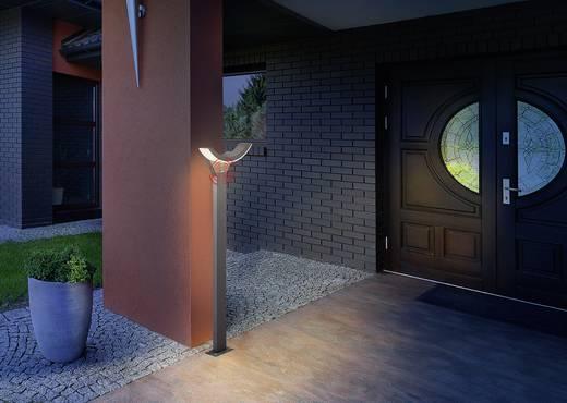 led au enstandleuchte mit bewegungsmelder 9 w warm wei esotec 201146 swingline grau kaufen. Black Bedroom Furniture Sets. Home Design Ideas