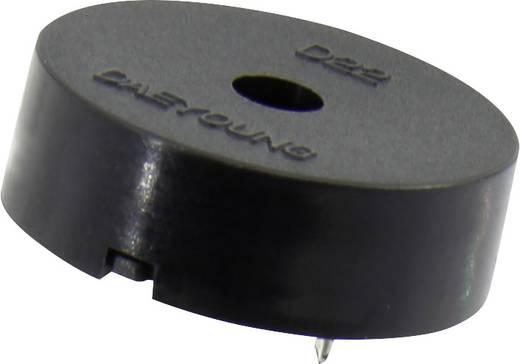 1365793 Piezo-Signalgeber Geräusch-Entwicklung: 98 dB Spannung: 30 V 1 St.