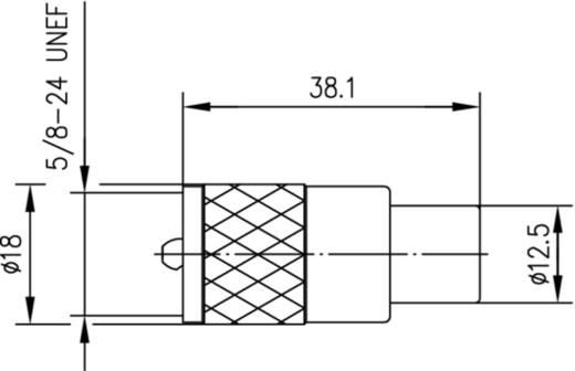 UHF-Steckverbinder Stecker, gerade 50 Ω Telegärtner J01040A0604 1 St.