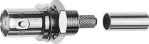 BNC-Steckverbinder Buchse, Einbau 50 Ω Telegärtner J01001A0078 1 St.