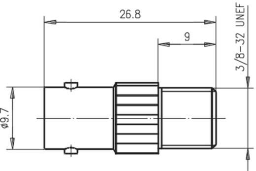 Koax-Adapter BNC-Buchse - F-Buchse Telegärtner J01008A0021 1 St.