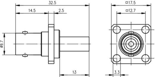 BNC-Steckverbinder Buchse, Einbau 50 Ω Telegärtner J01001A0080 1 St.