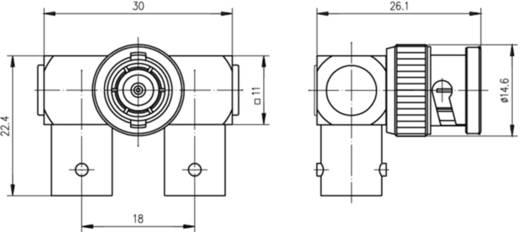 BNC-Adapter BNC-Buchse - BNC-Stecker, BNC-Buchse Telegärtner 1 St.