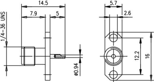 SMA-Steckverbinder Flanschbuchse 50 Ω Telegärtner J01151A0141 1 St.