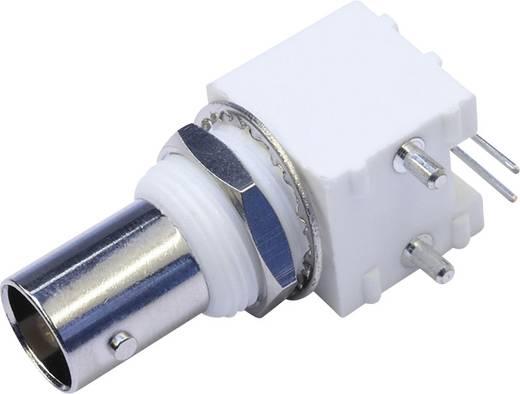 BNC-Steckverbinder Buchse, Einbau horizontal 50 Ω Telegärtner J01001A0038 1 St.