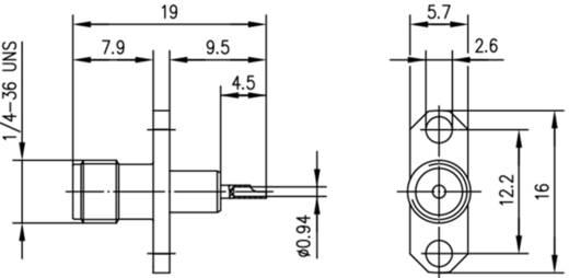 SMA-Steckverbinder Flanschbuchse 50 Ω Telegärtner J01151A0159 1 St.