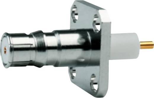 QLS-Steckverbinder Buchse, Einbau 50 Ω Telegärtner J01421A0025 1 St.