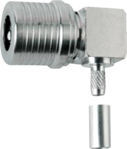 QLS-Steckverbinder Stecker, gewinkelt 50 Ω Telegärtner J01420A0105 1 St.