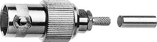 BNC-Steckverbinder Buchse, gerade 50 Ω Telegärtner J01001B0061 1 St.
