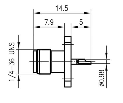 SMA-Steckverbinder Flanschbuchse 50 Ω Telegärtner J01151A0811 1 St.