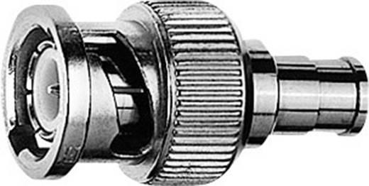 Koax-Adapter BNC-Stecker - SMB-Buchse Telegärtner J01008F0030 1 St.