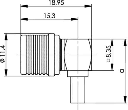 QLS-Steckverbinder Stecker, gewinkelt 50 Ω Telegärtner J01420A0085 1 St.