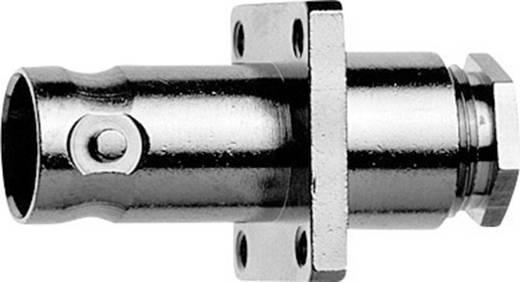 BNC-Steckverbinder Buchse, Einbau 50 Ω Telegärtner J01001A0695 1 St.
