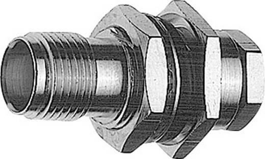 TNC-Steckverbinder Buchse, Einbau 50 Ω Telegärtner J01011A0036 1 St.