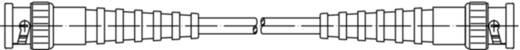 BNC-Messleitung 25 cm Schwarz Telegärtner L00010A1804