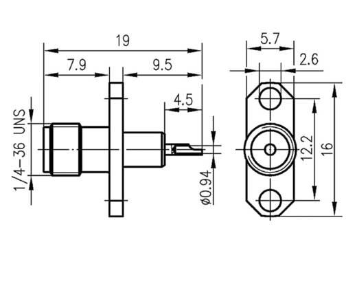 SMA-Steckverbinder Flanschbuchse 50 Ω Telegärtner J01151A0151 1 St.