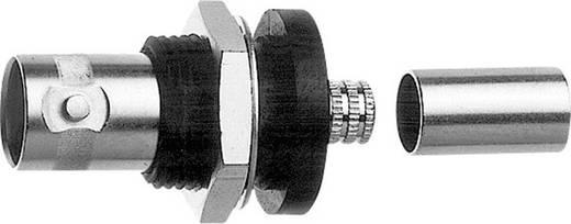 BNC-Steckverbinder Buchse, Einbau 50 Ω Telegärtner J01001A0084 1 St.