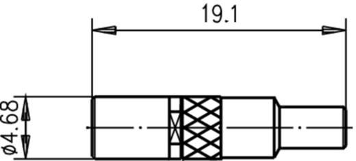 SSMB-Buchse Buchse, gerade 50 Ω Telegärtner J01191A0001 1 St.