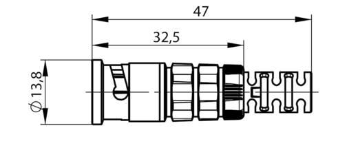 HDTV-BNC-Steckverbinder Stecker, gerade 75 Ω Telegärtner J01002A0081 1 St.