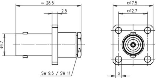 BNC-Steckverbinder Buchse, Einbau 50 Ω Telegärtner J01001A0014 1 St.
