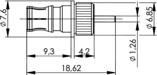 QLS-Steckverbinder Buchse, Einbau 50 Ω Telegärtner J01421A0015 1 St.