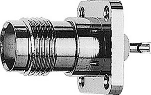 TNC-Steckverbinder Buchse, Einbau 50 Ω Telegärtner J01011F0613 1 St.