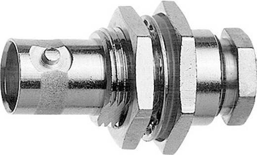 BNC-Steckverbinder Buchse, Einbau 75 Ω Telegärtner J01003A1328 1 St.