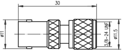 Koax-Adapter BNC-Buchse - Mini-UHF-Stecker Telegärtner J01008F0072 1 St.