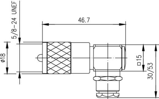 UHF-Steckverbinder Stecker, gewinkelt 50 Ω Telegärtner J01040B1201 1 St.