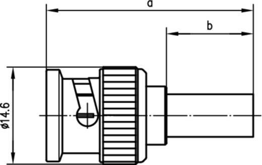 BNC-Steckverbinder Stecker, gerade 50 Ω Telegärtner J01000A0043 1 St.