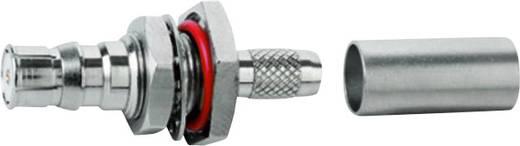 QLS-Steckverbinder Buchse, Einbau 50 Ω Telegärtner J01421A0065 1 St.