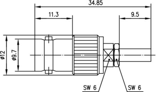 BNC-Steckverbinder Buchse, gerade 50 Ω Telegärtner J01001B0060 1 St.