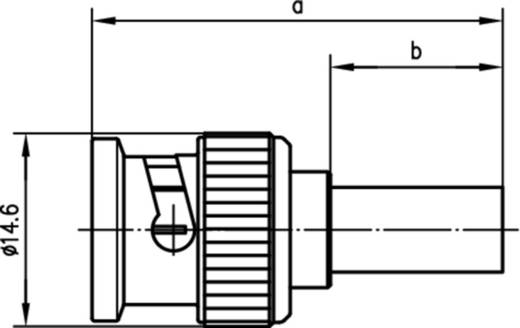 BNC-Steckverbinder Stecker, gerade 75 Ω Telegärtner J01002L1288z 1 St.