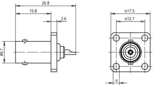 BNC-Steckverbinder Flanschbuchse 75 Ω Telegärtner J01003A1228 1 St.