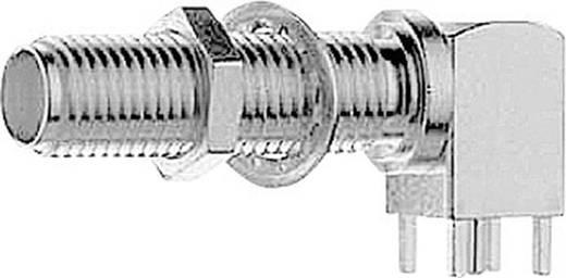 SMA-Steckverbinder Buchse, Einbau horizontal 50 Ω Telegärtner J01151A0921 1 St.