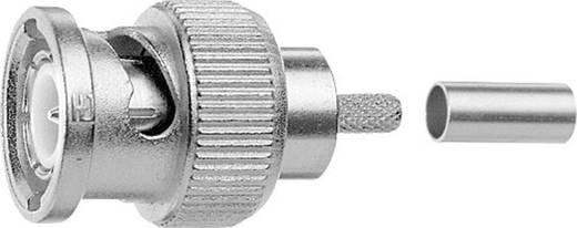 HDTV-BNC-Steckverbinder Stecker, gerade 75 Ω Telegärtner J01002A0073 1 St.