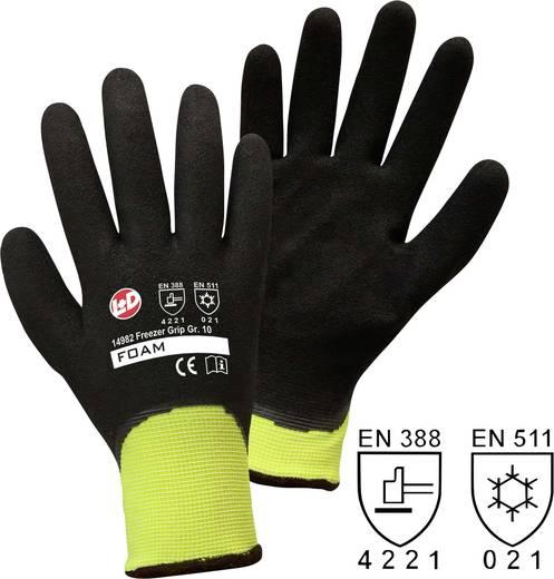 Polyester Arbeitshandschuh Größe (Handschuhe): 10, XL EN 388 , EN 511 CAT II worky Freezer Grip 14982 1 Paar