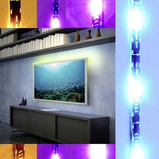 led streifen komplettset mit stecker 5 v 80 cm rgb x4 life 701444 701444 kaufen. Black Bedroom Furniture Sets. Home Design Ideas