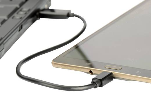 ednet USB 2.0 Kabel [1x USB 2.0 Stecker A, SD-Karten-Slot - 1x USB 2.0 Stecker Micro-B] 0.3 m Schwarz