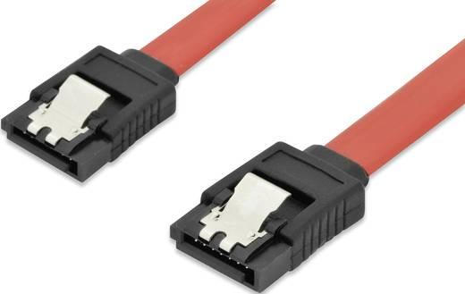 Festplatten Anschlusskabel [1x SATA-Buchse 7pol. - 1x SATA-Buchse 7pol.] 0.30 m Rot ednet